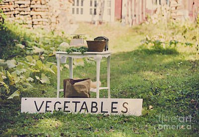 Connecticut Vegetable Stand Poster by Diane Diederich