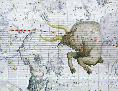 Constellation Of Taurus Poster by Sir James Thornhill