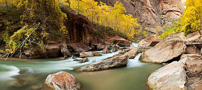 Cottonwood Trees And Rocks Along Virgin Poster by Panoramic Images
