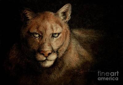 Cougar Eyes Poster by Neva Cruddas