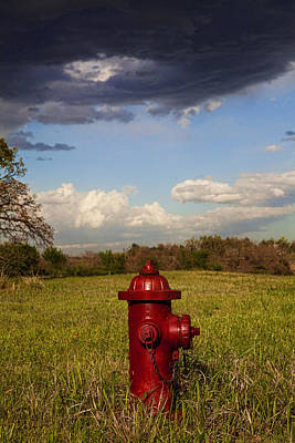 Country Fire Hydrant Poster by Toni Hopper