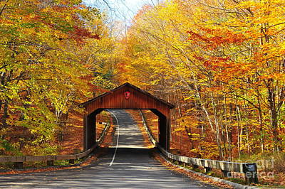 Covered Bridge On Pierce Stocking Scenic Drive Poster by Terri Gostola