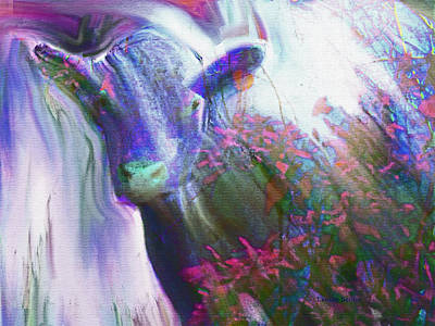 Cow With Falling Stars Poster by Lenore Senior and Sharon Burger