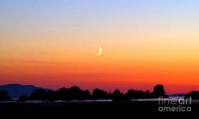Crescent Moon At Sunset  - Lummi Bay Poster by Douglas Taylor
