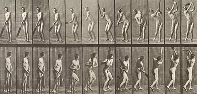 Cricketer Poster by Eadweard Muybridge