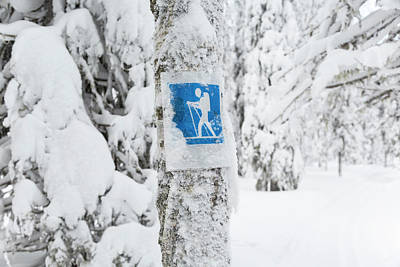 Cross Country Skiing Sign, Riisitunturi Poster by Peter Adams