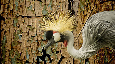 Crowned Crane Consistency Poster by Bill Tiepelman