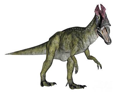 Cryolophosaurus Dinosaur Poster by Elena Duvernay