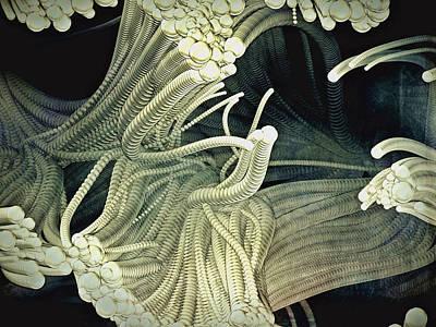 Cthulhu Beckons Poster by Susan Maxwell Schmidt