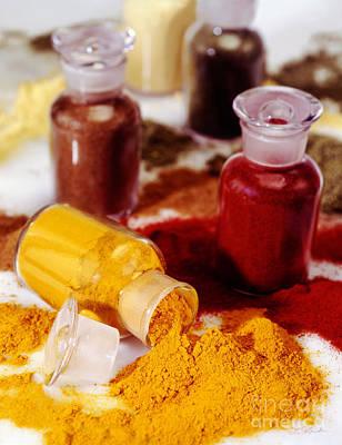 Curry Powder Poster by Iris Richardson