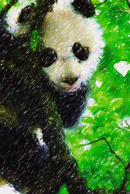 Cute Giant Panda Bear In Tree Poster by Lanjee Chee