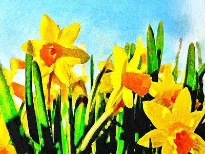 Daffodils By Morning Light Poster by Digital Photographic Arts