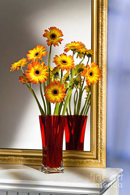 Daisies In Red Vase Poster by Tony Cordoza