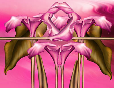 Dance Of The Pink Calla Lilies IIi Poster by Georgiana Romanovna