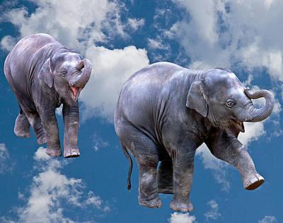 Dancing Elephants Poster by Jean Noren