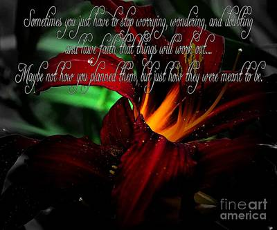 Dark Red Day Lily And Quote Poster by Barbara Griffin