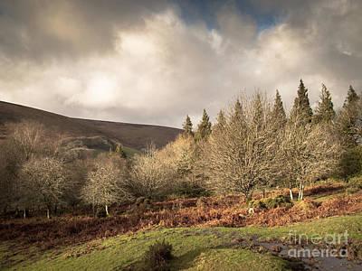 Dartmoor View Poster by Jan Bickerton