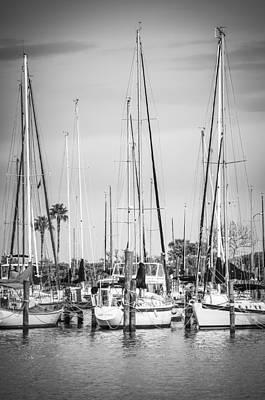 Davis Island Yachts Bw Poster by Carolyn Marshall