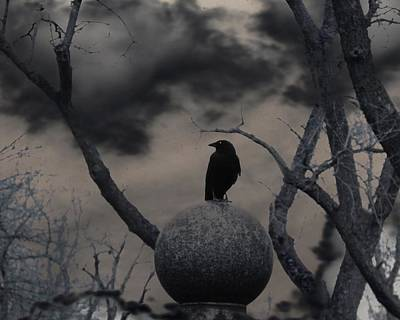 Day Dark As Night Poster by Gothicolors Donna Snyder