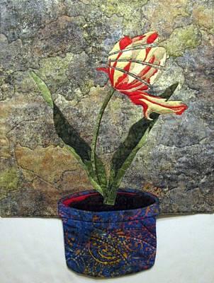 Deconstructed Tulip Poster by Lynda K Boardman