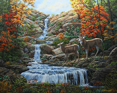 Deer Painting - Tranquil Deer Cove Poster by Crista Forest