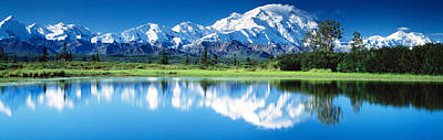 Denali National Park Ak Usa Poster by Panoramic Images