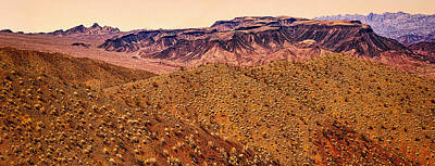 Desert View In Arizona By The Colorado River Poster by Bob and Nadine Johnston