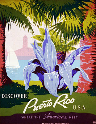 Discover Puerto Rico Poster by Georgia Fowler