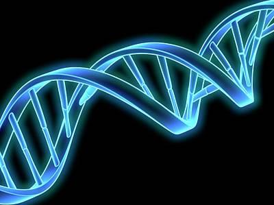 Dna (deoxyribonucleic Acid) Strand Poster by Laguna Design