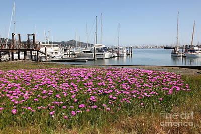 Docks At Sausalito California 5d22695 Poster by Wingsdomain Art and Photography