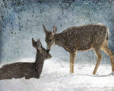 Doe A Deer Poster by Juli Scalzi