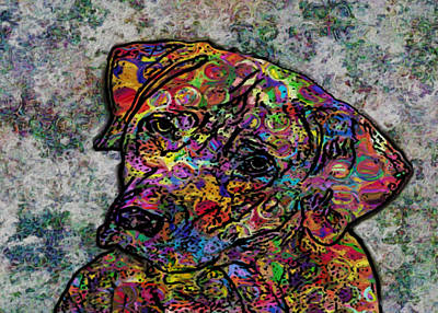 Dog With Color Poster by Jack Zulli