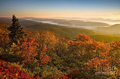 Dolly Sods Wilderness D70s12473 Poster by Kevin Funk