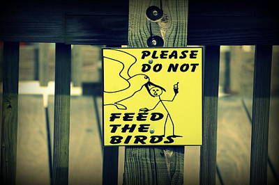 Dont Feed The Birds Poster by Laurie Perry