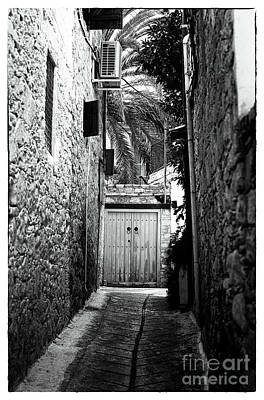 Double Doors In The Alley Poster by John Rizzuto