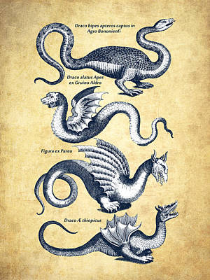 Dragons - Historiae Naturalis  - 1657 - Vintage Poster by Aged Pixel