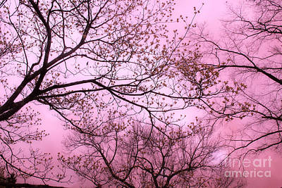 Dreamy Baby Pastel Pink Trees Nature - Shabby Chic Pink Nature Tree Art Poster by Kathy Fornal