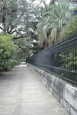 Dreamy Savannah Georgia Street Architecture Rod Iron Gates With Palm Trees  Poster by Kathy Fornal