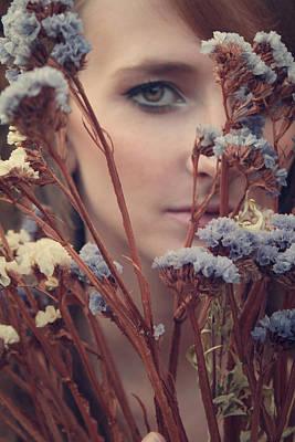 Dried Flowers Poster by Wojciech Zwolinski