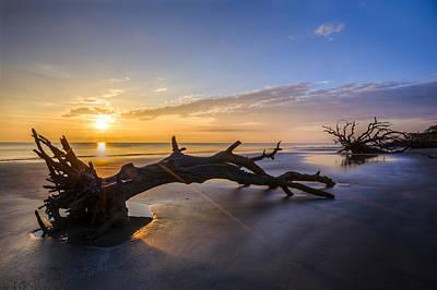 Driftwood Beach At Sunrise Poster by Debra and Dave Vanderlaan