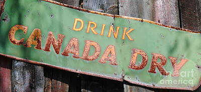 Drink Canada Dry Poster by Samantha Black