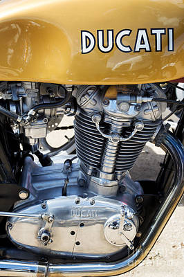 Ducati Desmo Mk 3 450cc Poster by Tim Gainey