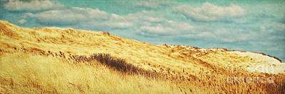 Dunes Of Amrum Poster by Angela Doelling AD DESIGN Photo and PhotoArt