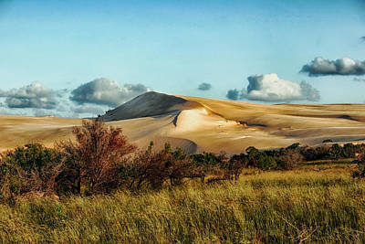 Dunes Of Mozambique Poster by Mountain Dreams