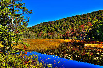 Early Autumn At Cary Lake Poster by David Patterson