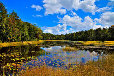 Early Autumn At Fly Pond - Old Forge New York Poster by David Patterson