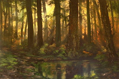 Early Morning Sun On Cannock Chase Poster by Jean Walker