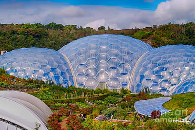 Eden Project Biomes Poster by Chris Thaxter