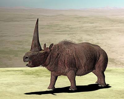 Elasmotherium Poster by Friedrich Saurer