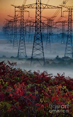 Electric Sumac Autumn Poster by Henry Kowalski